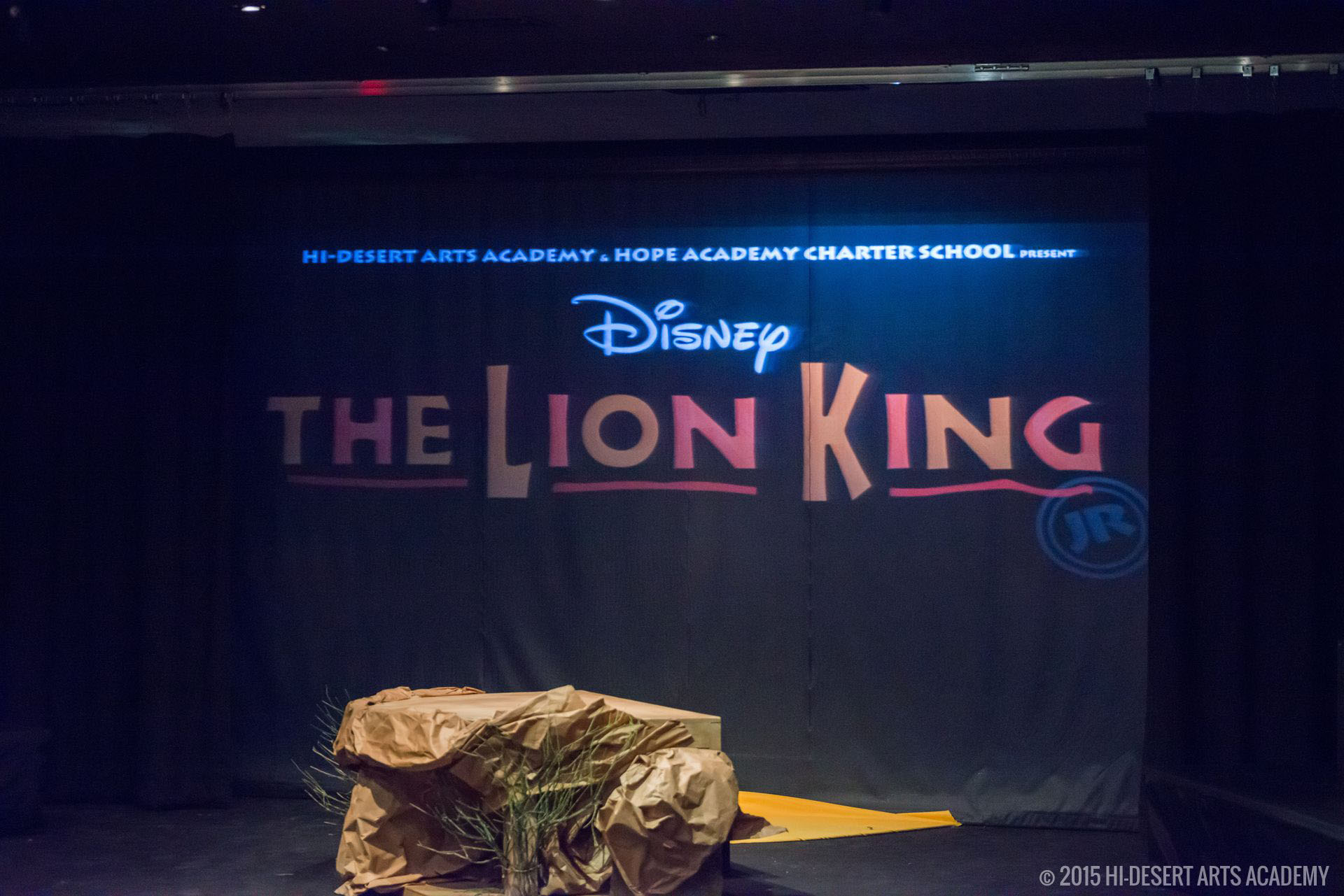 HDAA The Lion King 2015-95