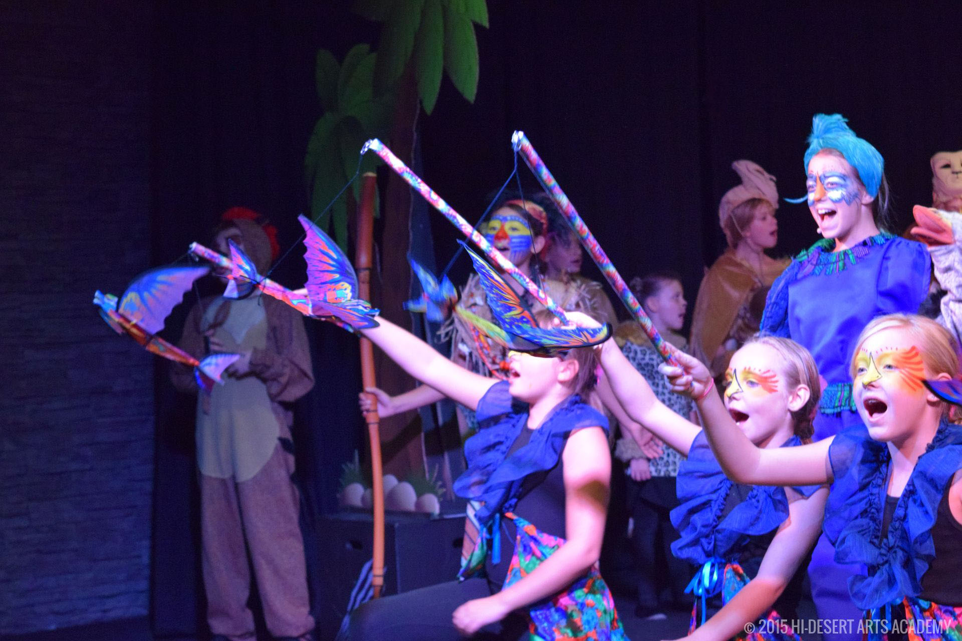 HDAA The Lion King 2015 - Dress Rehearsal10