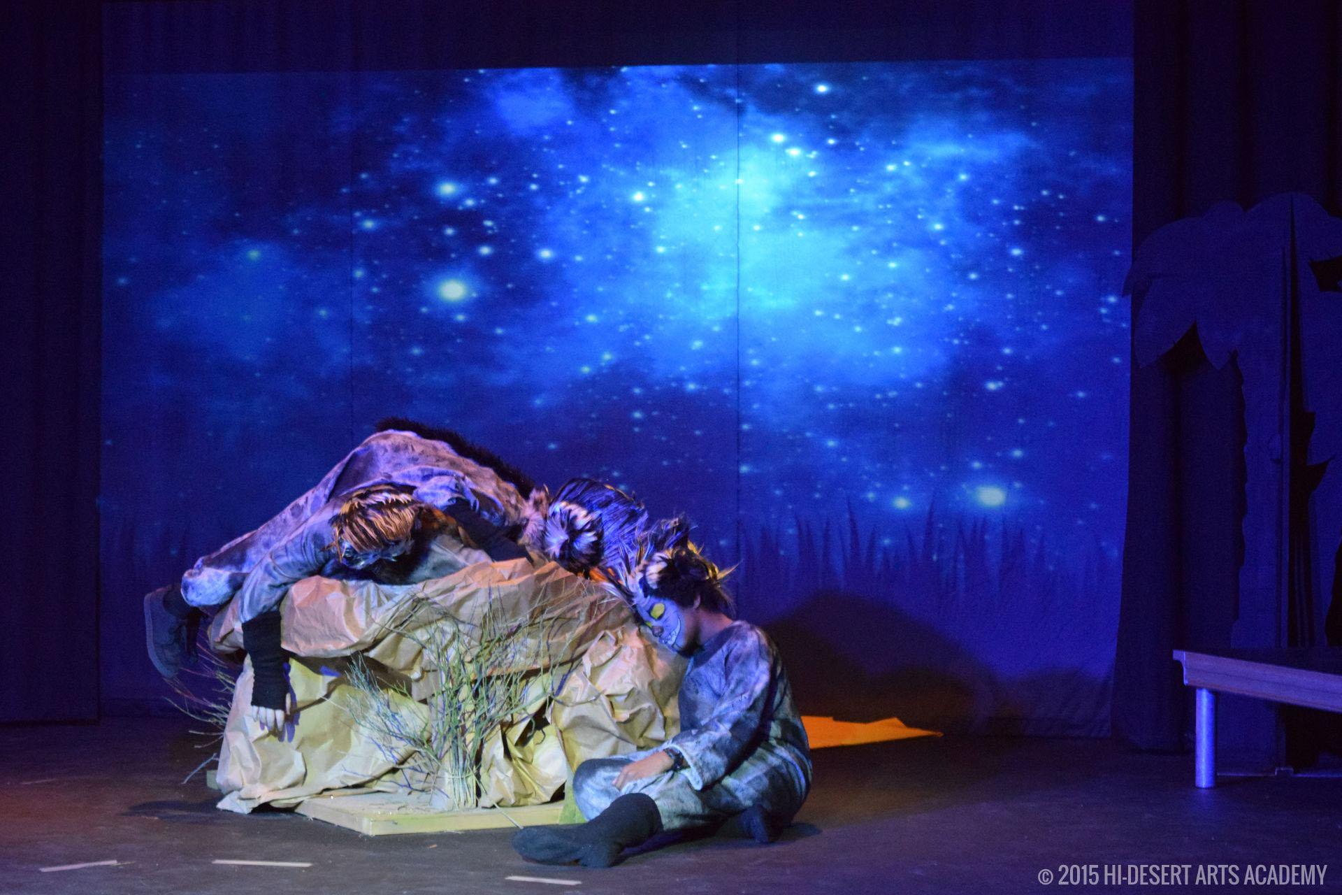 HDAA The Lion King 2015 - Dress Rehearsal18