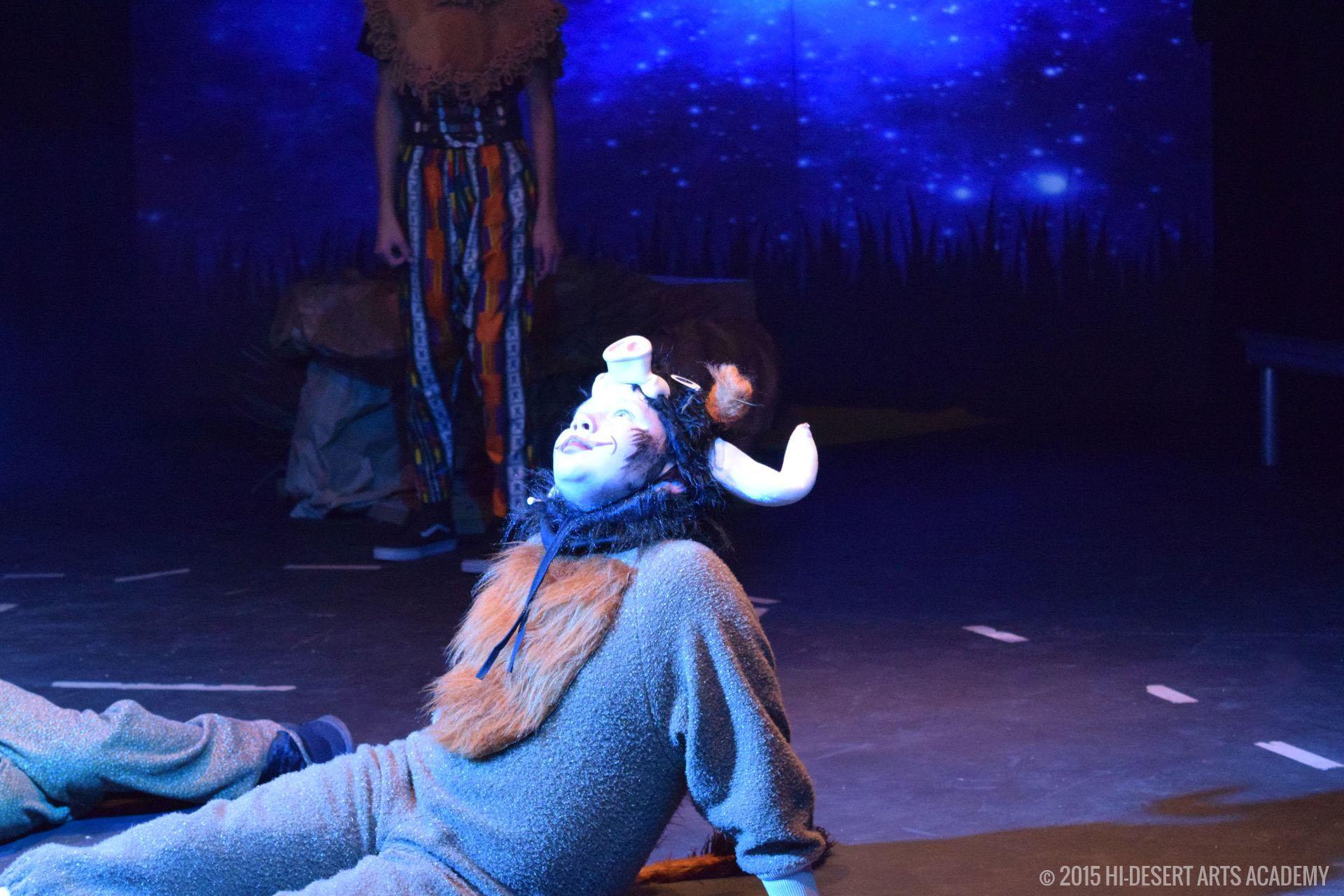 HDAA The Lion King 2015 - Dress Rehearsal24