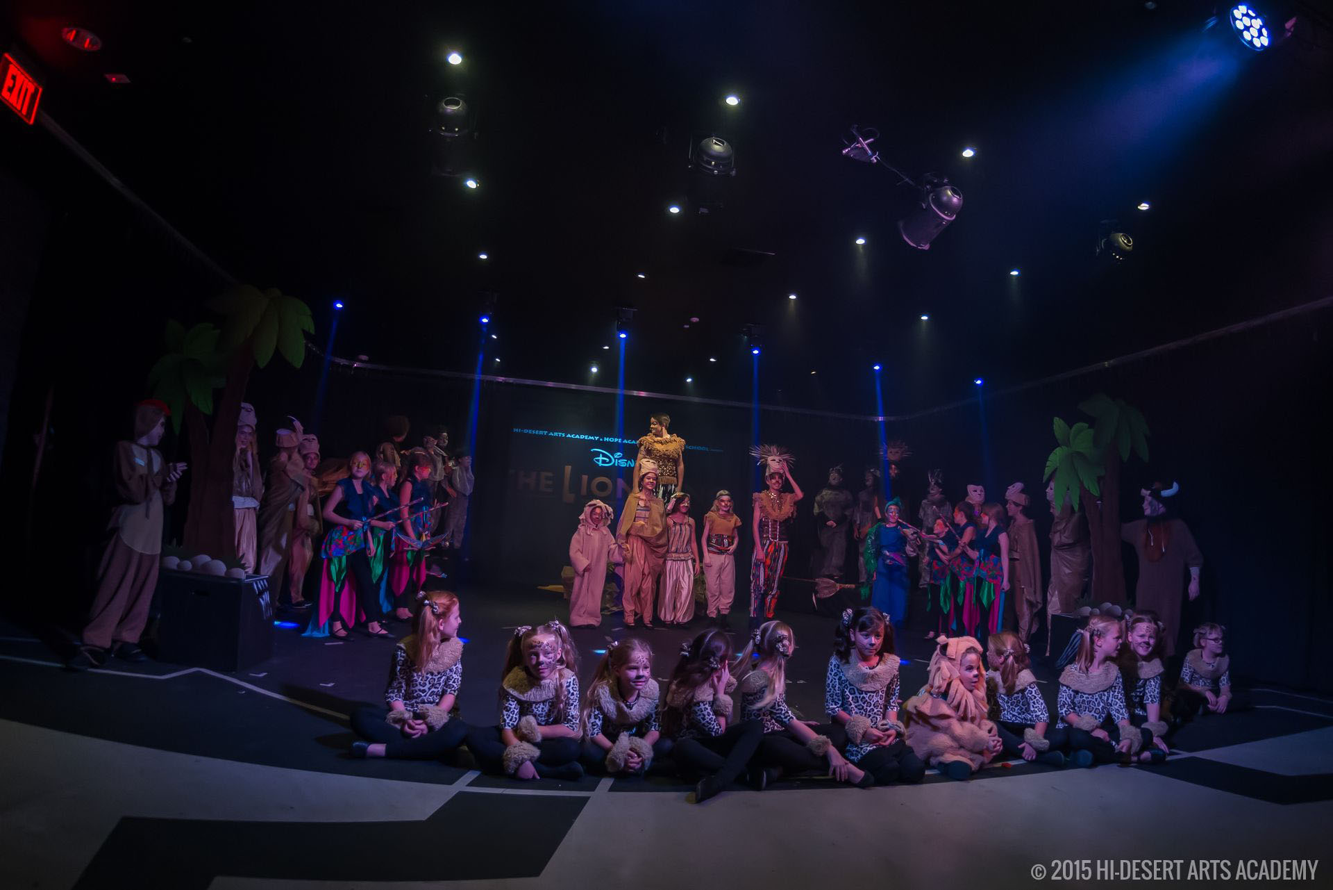 HDAA The Lion King 2015 - Final Show03