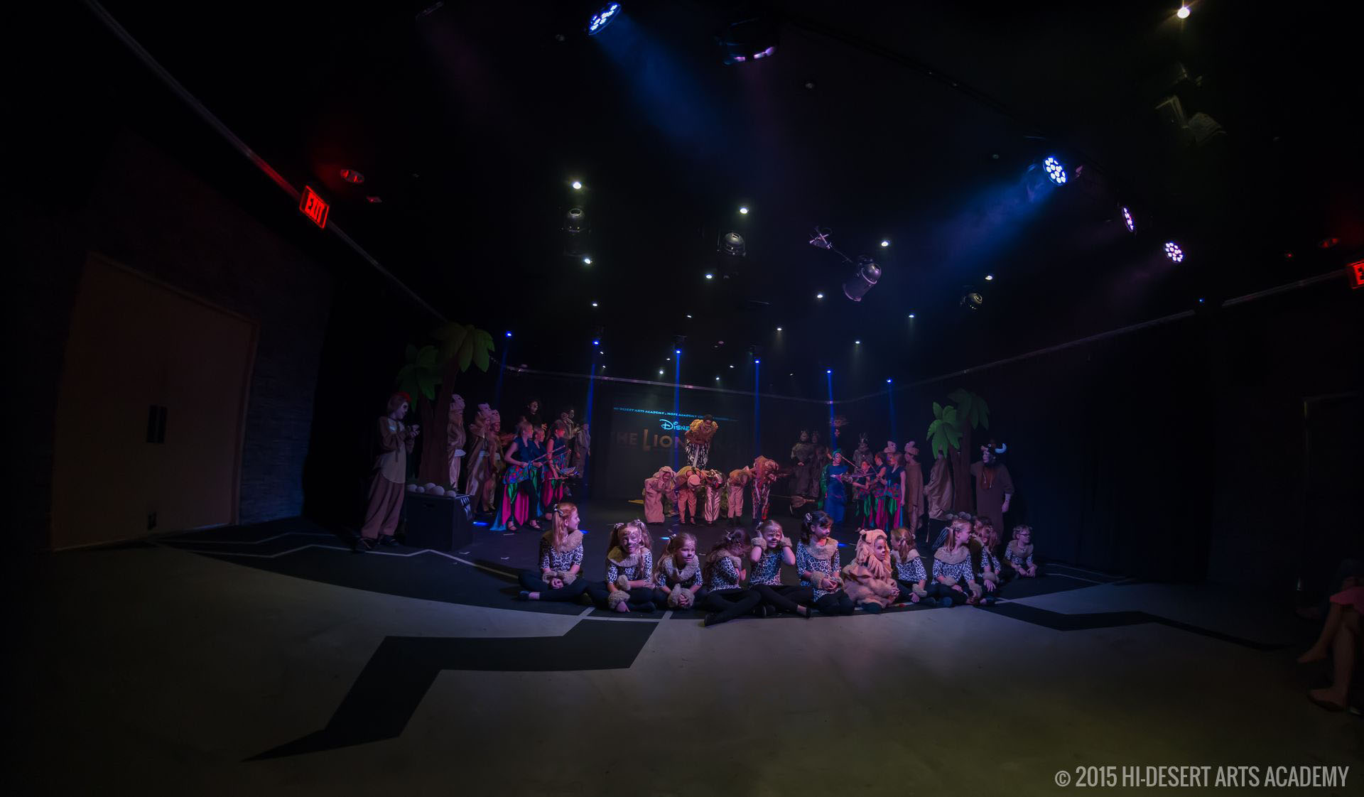 HDAA The Lion King 2015 - Final Show04