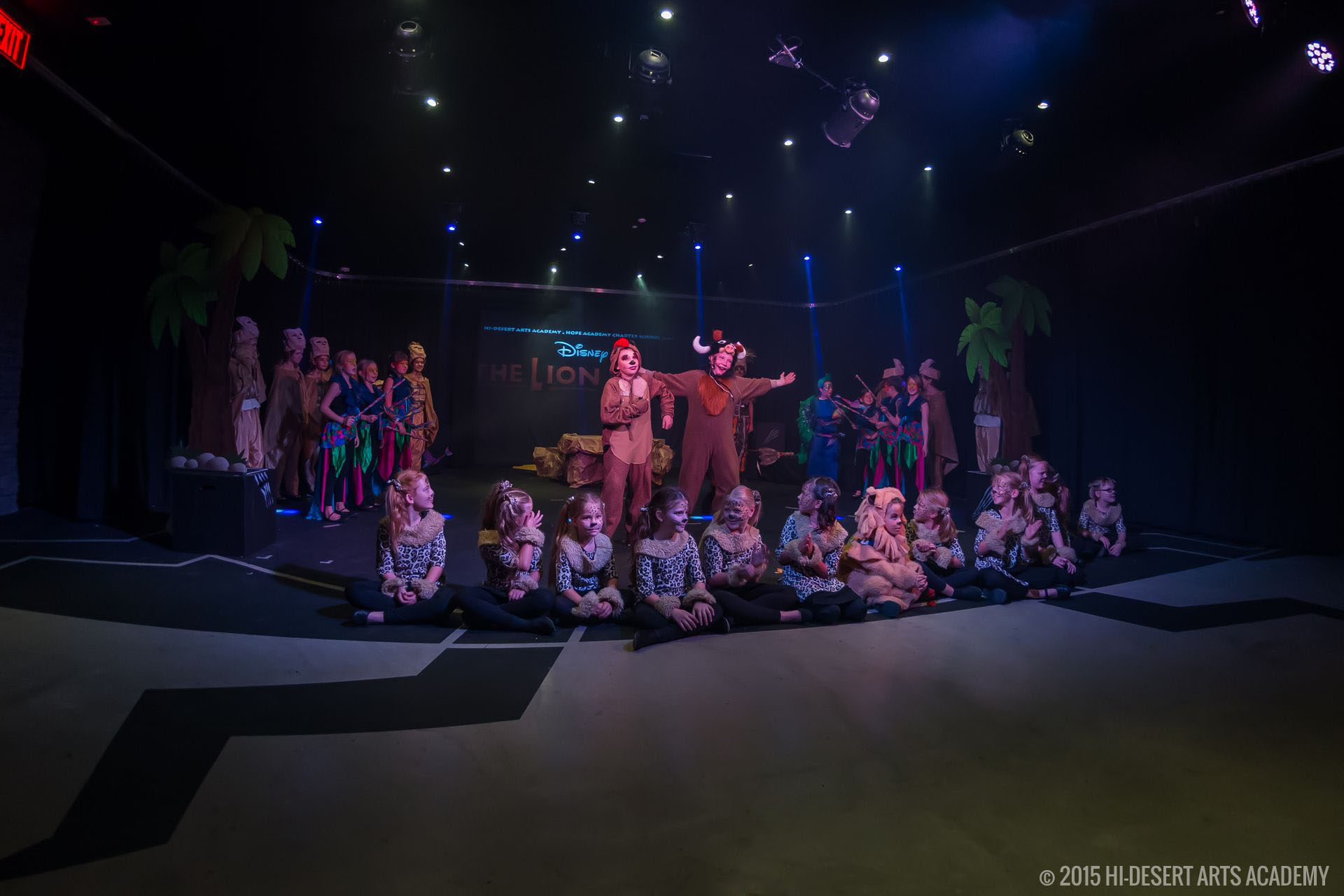 HDAA The Lion King 2015 - Final Show06
