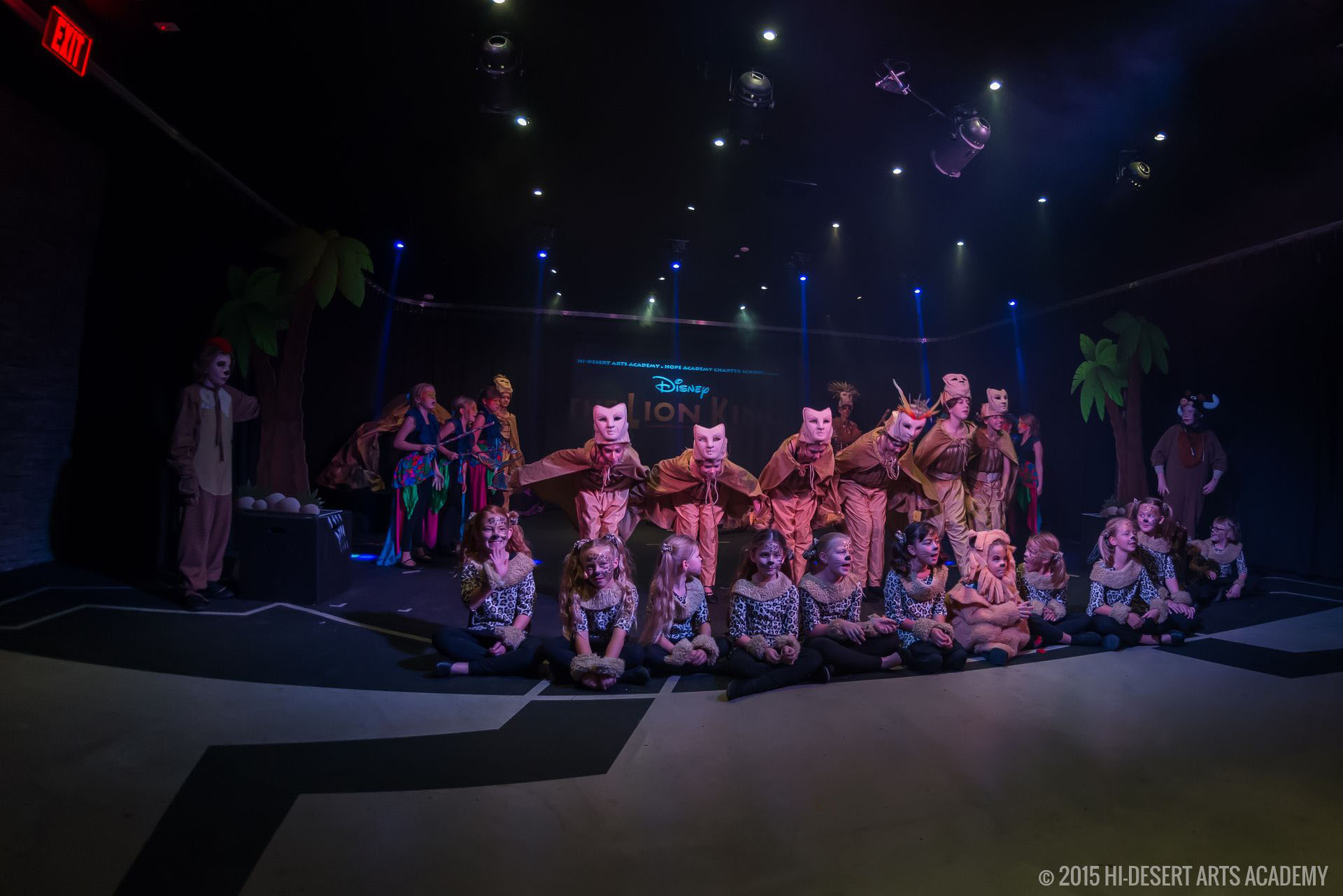 HDAA The Lion King 2015 - Final Show08
