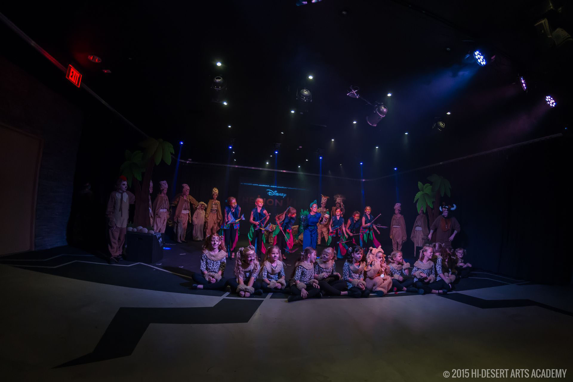 HDAA The Lion King 2015 - Final Show09