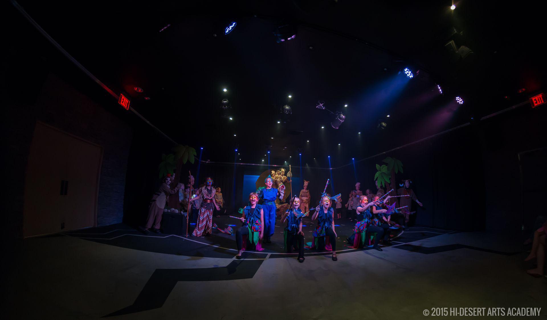 HDAA The Lion King 2015 - Final Show10