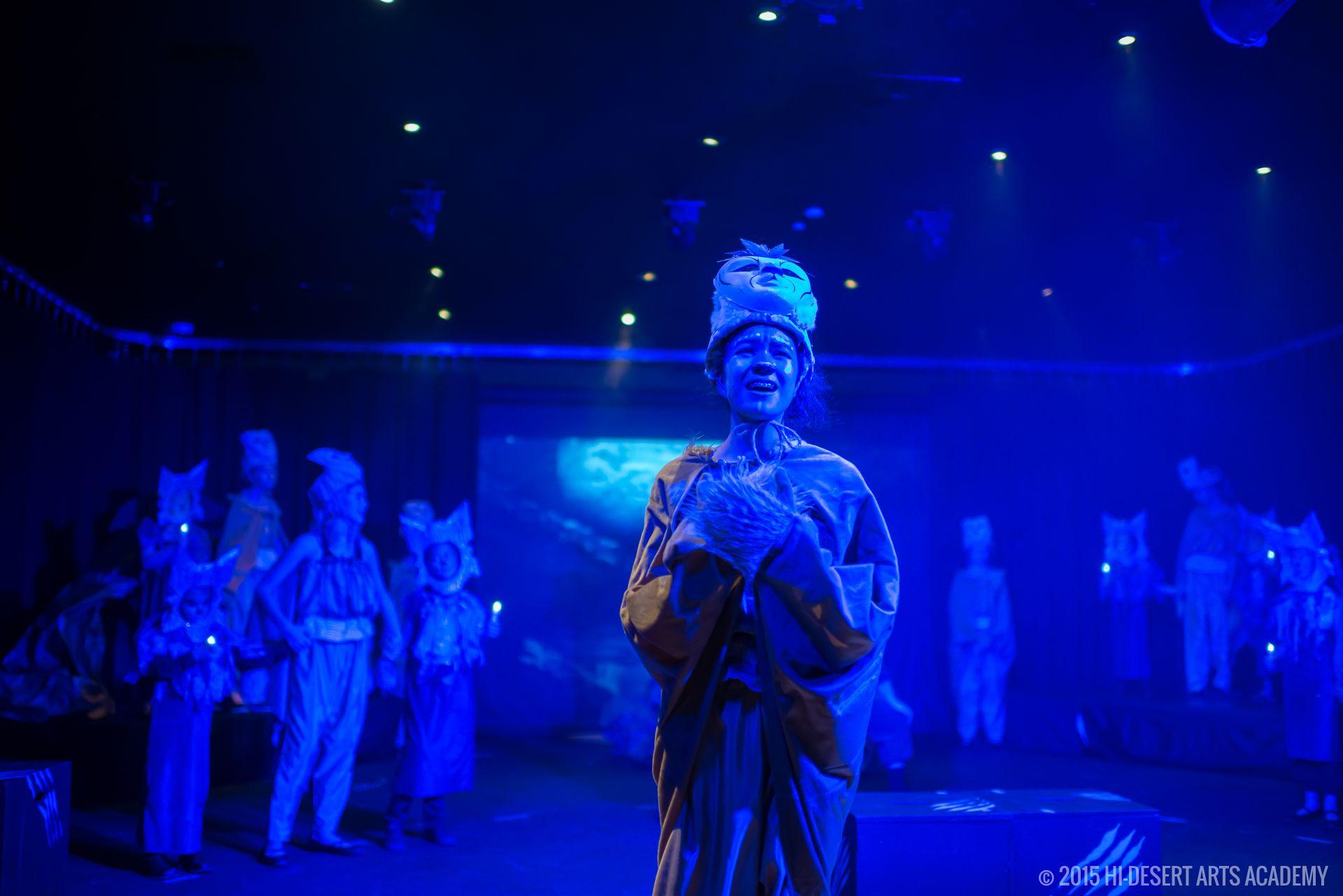 HDAA The Lion King 2015 - Final Show18