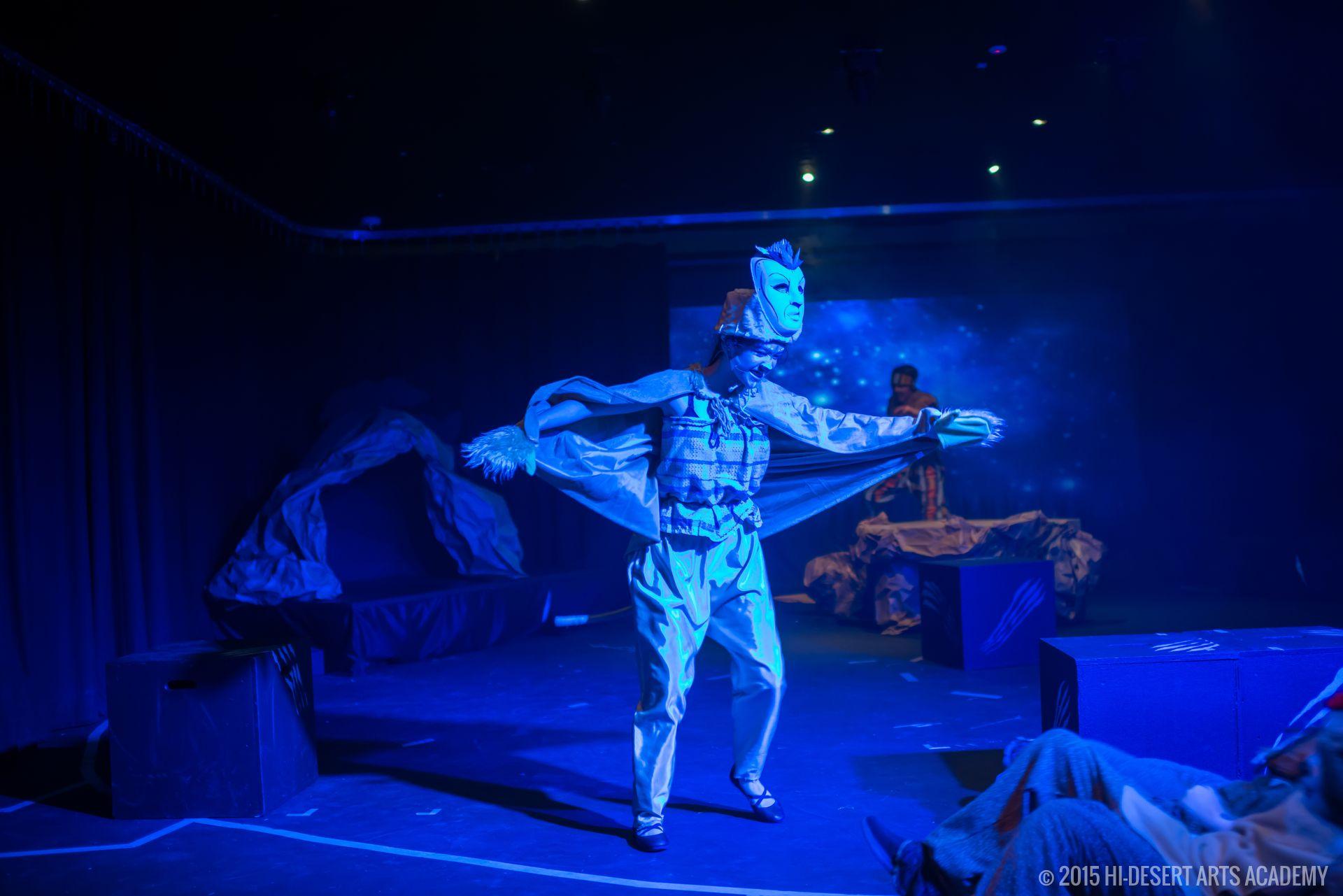 HDAA The Lion King 2015 - Final Show21