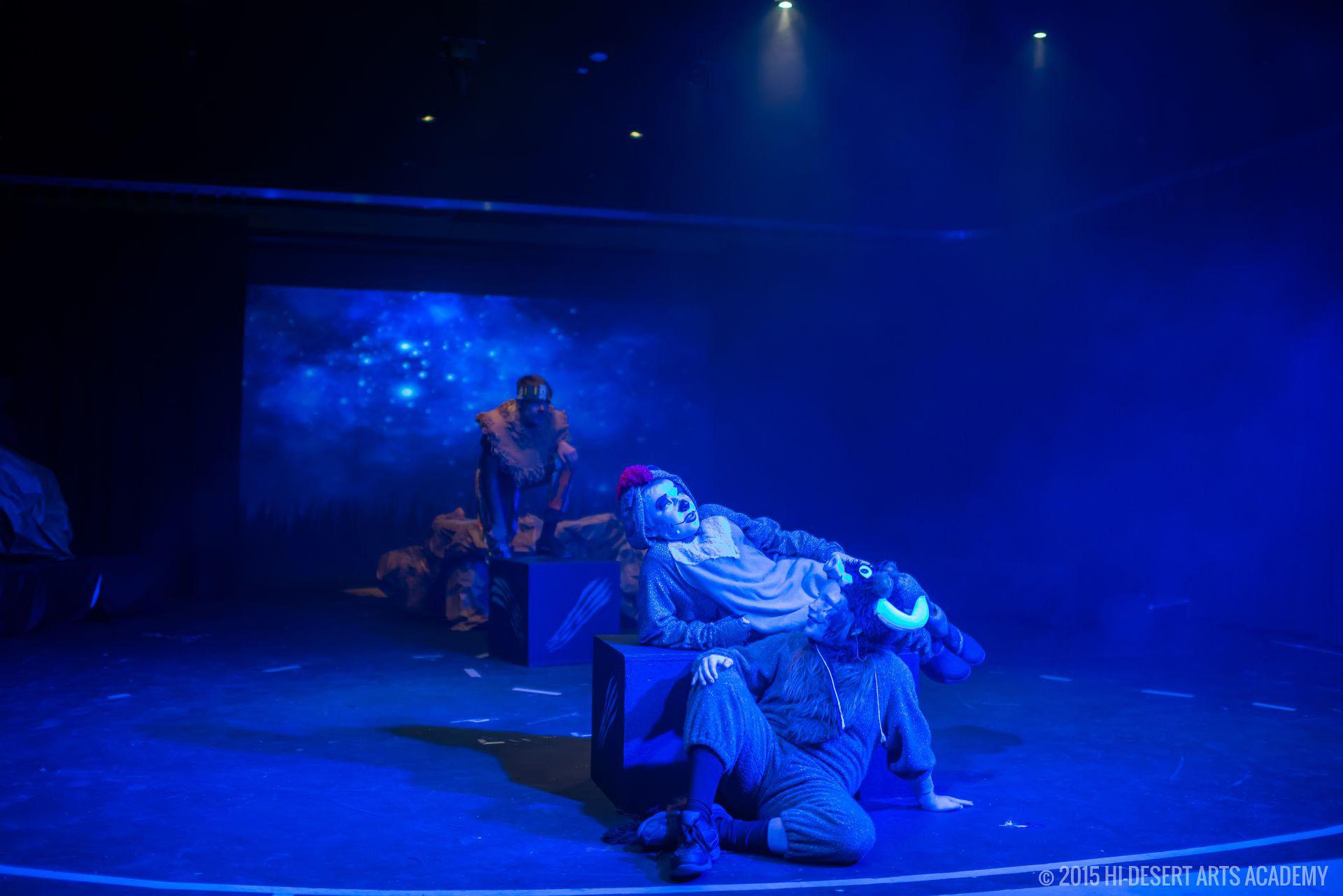 HDAA The Lion King 2015 - Final Show22