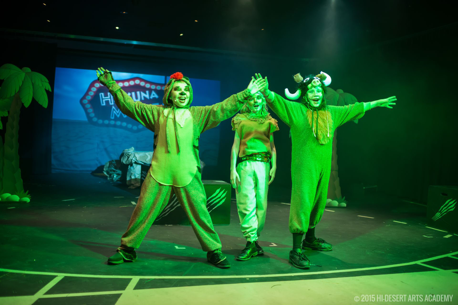 HDAA The Lion King 2015 - Final Show31