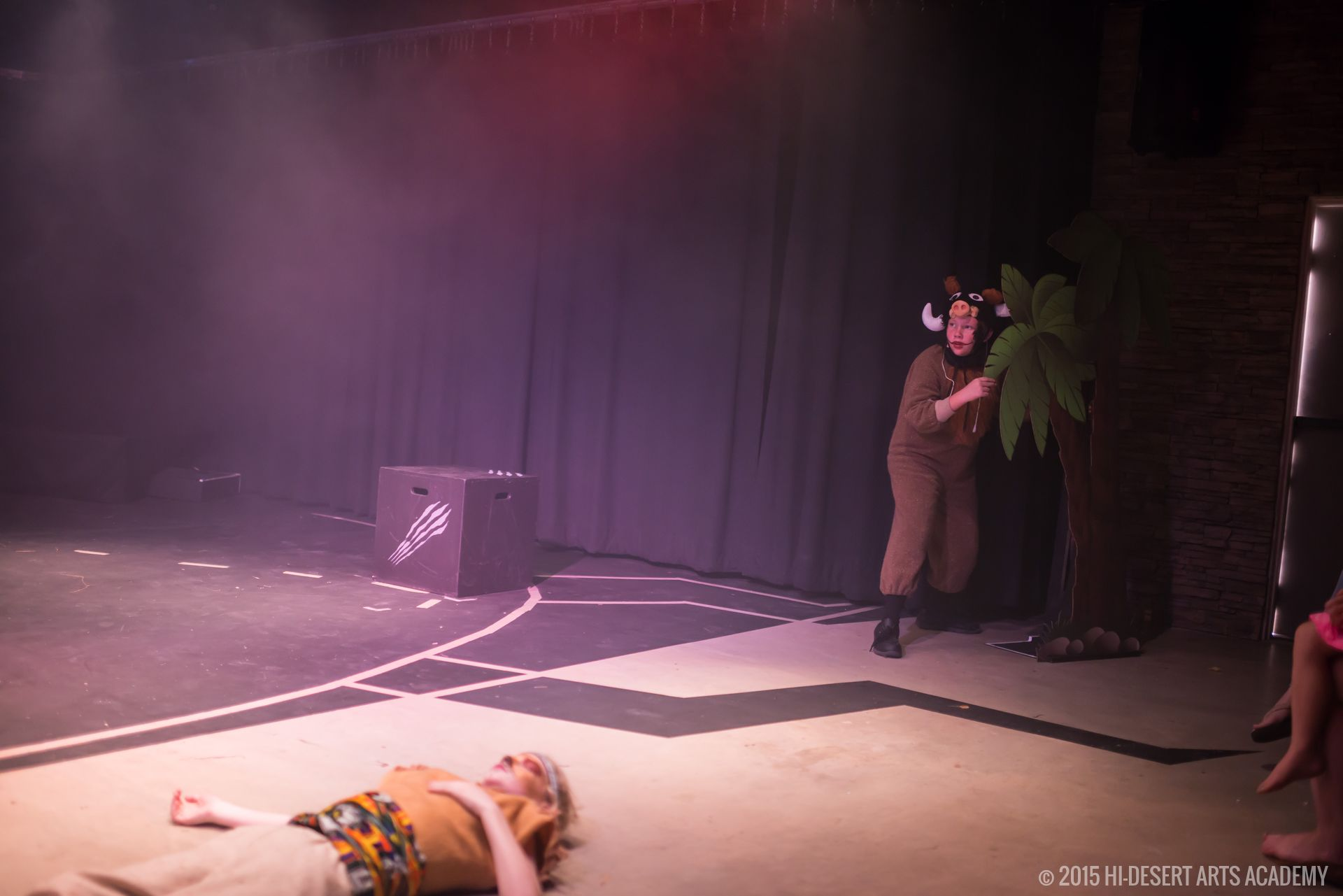 HDAA The Lion King 2015 - Final Show37
