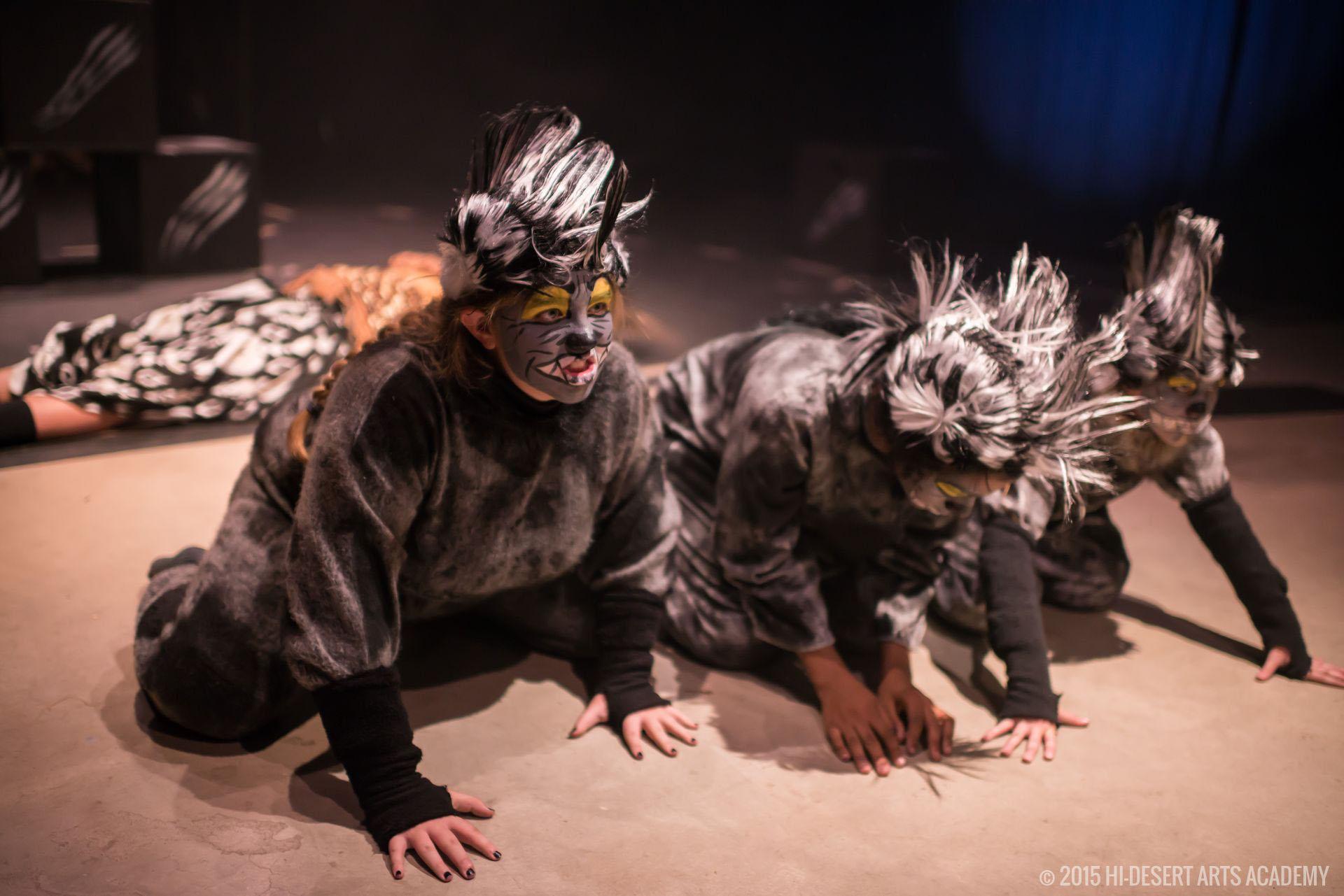 HDAA The Lion King 2015 - Final Show40