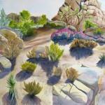 JTNP- Desert Blush