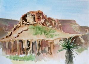 At the Mojave Desert Preserve State Park
