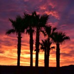 Twentynine Palms Sunset