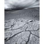 renee--desert-drama-photo-11x14-365_result