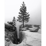 renee-taft-point-photo-11x14-165_result