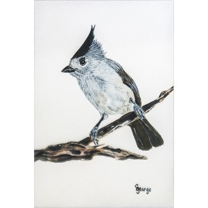 George_ BlackCrested Tufted Titmouse_ 12x10_ 125