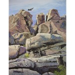 Barker Dam rock outcropping with green plants growing in the cracks. A red-tailed hawk is flying overhead. Oil paint and painting knife.